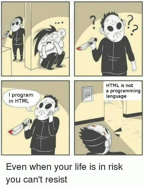 A murderer is looking for a programmer meme